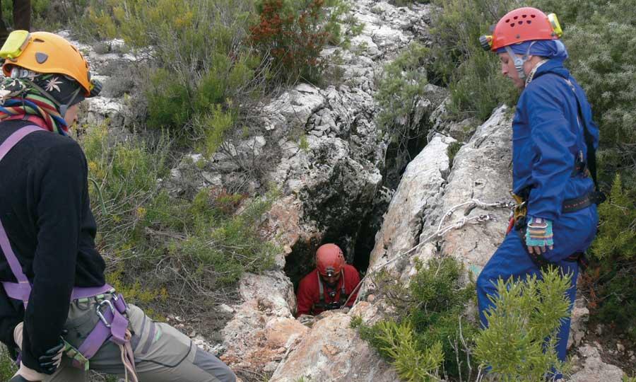 Un mundo de fieras. Grandes carnívoros en la prehistoria valenciana